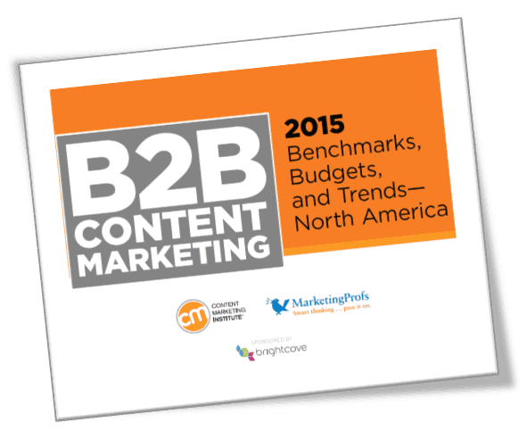 2015 B2B Marketing Research Report Download